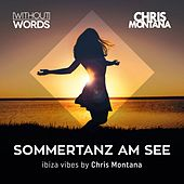 Sommertanz am See, Vol. 1 (Compiled by Chris Montana) von Various Artists