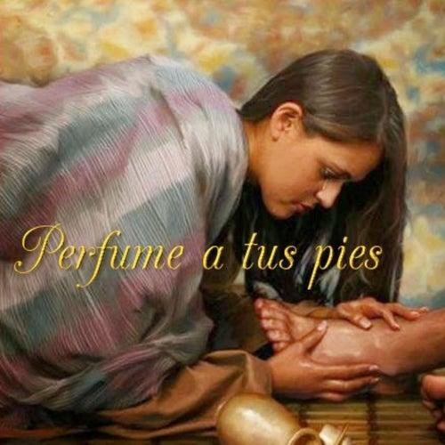 Perfume a Tus Pies by Marcela Gandara