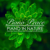Piano in Nature by Piano Peace