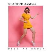 Dust My Broom by Elmore James