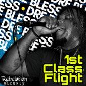 1st Class Flight von Rebelution Records