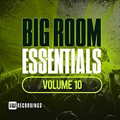 Big Room Essentials, Vol. 10 - EP by Various Artists