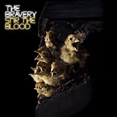 Stir The Blood de The Bravery