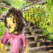 Steps de Caleb Hawley