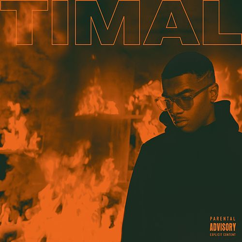 Trop chaud by Timal
