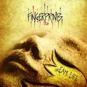 Dream Life by Fingerprints