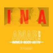 I.N.A de Amar