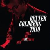 Tell Me Something New by Dexter Goldberg Trio