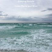 Beach Wind and Ocean Waves by The Sleeping Sounds