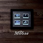 The Moose von Moose