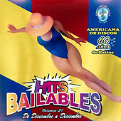 Hits Bailables Vol. 21 (De Diciembre A Diciembre ) by Various Artists