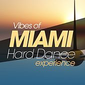 Vibes of Miami Hard Dance Tunes de Various Artists
