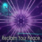 Reclaim Your Peace von Massage Therapy Music