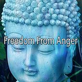 Freedom From Anger von Massage Therapy Music