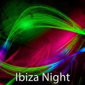 Ibiza Night by Ibiza Dance Party