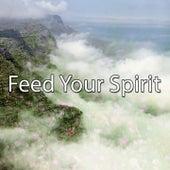 Feed Your Spirit von Entspannungsmusik