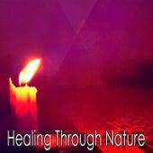 Healing Through Nature von Massage Therapy Music