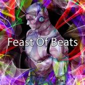 Feast Of Beats by CDM Project