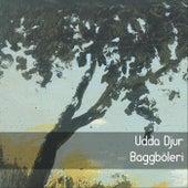 Baggböleri by Udda Djur