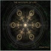 The Mistery of Life de Fernanbirdy