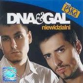 Niewidzialni de DNA
