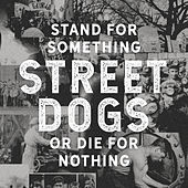 Stand For Something Or Die For Nothing de Street Dogs