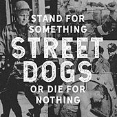 Other Ones de Street Dogs