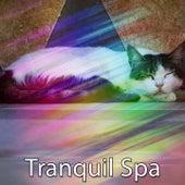 Tranquil Spa de Best Relaxing SPA Music