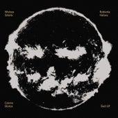 Czarne Śłońce - Zenit von Various Artists