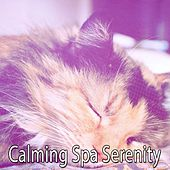 Calming Spa Serenity von Best Relaxing SPA Music