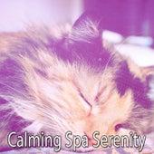 Calming Spa Serenity de Best Relaxing SPA Music