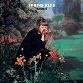 Animal by Spring King