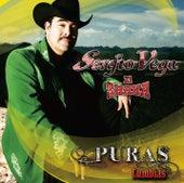 Puras Cumbias de Sergio Vega Y Sus Shakas Del Norte