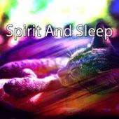 Spirit And Sleep de Water Sound Natural White Noise