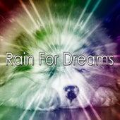Rain For Dreams de Thunderstorm Sleep