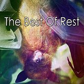 The Best Of Rest de White Noise Babies