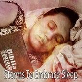 Storms To Embrace Sleep de Thunderstorm Sleep