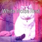 White Noise Rest by Deep Sleep Music Academy