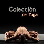 Colección de Yoga by Nature Sounds (1)