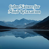 Calm Nature for Mind Relaxation by Nature Sounds (1)