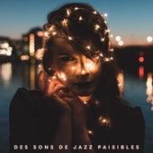 Des sons de jazz paisibles by Acoustic Hits