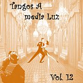Tangos a Media Luz (Vol. 12) by Various Artists
