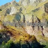 Find Peaceful Sleep Through Sound de Smart Baby Lullaby