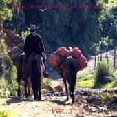 Clasicos De La Musica Carrilera Vol 3 de Various Artists