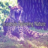 Insomnia Relieving Nature de Sounds Of Nature