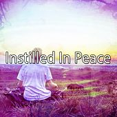 Instilled In Peace de Zen Meditation and Natural White Noise and New Age Deep Massage