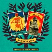 Son de la Vida by Pascuala Ilabaca y Fauna