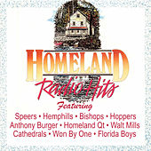 Homeland Radio Hits Vol 8 by Various Artists