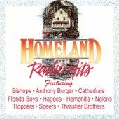Homeland Radio Hits Vol 7 by Various Artists