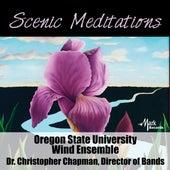 Scenic Meditations de Various Artists